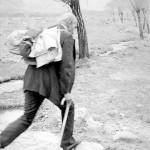 دکتر باستانی پاریزی در لاله زار ـ عکس از ایرج افشار
