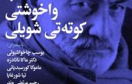 واخوشتی کوته تی شویلی، مترجم دیوان حافظ و مولانا به زبان گرجی