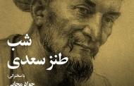 شب طنز سعدی برگزار شد/پریسا احدیان